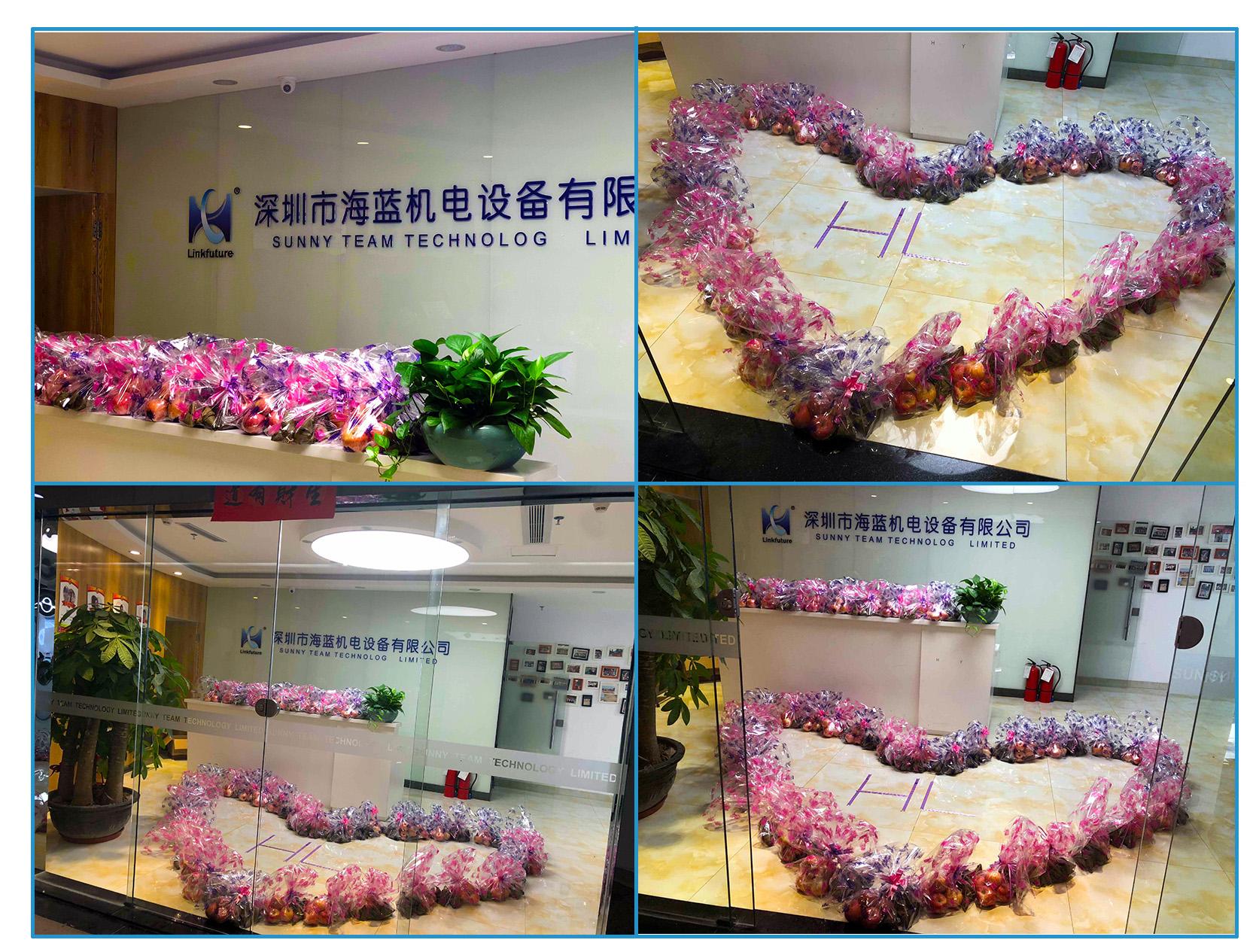万水千山粽是情————海蓝机电祝大家端午节快乐